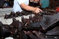 A vendor selling bats at the Tomohon Extreme Meat market in Indonesia. Photo: AFP