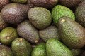 For some Australian companies, the cost of shipping avocados overseas has increased almost five times. Photo: Shutterstock