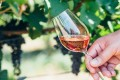 White zinfandel is actually a rosé and vastly outsells red zinfandel. Photo: Shutterstock