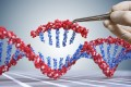 According to the steering committee's report, the Hong Kong Genome Project will begin recruiting people in the middle of next year to help build up a database of genome sequences. Photo: Shutterstock