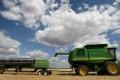 China is Australia's largest barley market. Photo: AFP