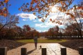 A woman walks her dog on an autumn day in Canberra. The coronavirus outbreak in Australia developed amid lower humidity and relatively stable temperatures. Photo: Xinhua