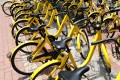 China has had its fair share of big start-up failures too, such as bike sharing unicorn Ofo. Photo: Bloomberg