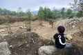 A boy sits beside one of the creeks that was turned into a construction site as part of a project to improve water quality. Photo: Handout