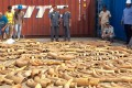 Cambodian Customs and Excise Officials examine ivory seized from a shipping container at the Phnom Penh port in December 2018. Photo: AFP