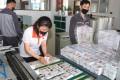 A photo provided by the North Korean news agency KCNA shows North Koreans preparing anti-South Korea propaganda leaflets to send across the border. Photo: KCNA/DPA