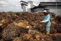 A man works at a palm oil fruit collection centre in Dangkil, outside Kuala Lumpur. File photo: AP