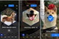 Alipay's AI algorithm provides instructions that guide users through taking a photos of their pets to enrol them into its pet insurance program. Picture: Handout