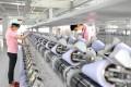Nameson has spent 1.6 billion yuan on its manufacturing business in Huizhou. Photo: Handout