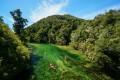 Abel Tasman National Park, in New Zealand. Photo: Shutterstock
