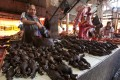 Smoked Bats on a market stall in Tomohon, Indonesia. Photo: AFP