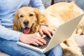 Pets may be more at risk from the coronavirus than thought, French scientists say. Photo: Shutterstock