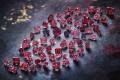 The Argyle Pink Diamonds Signature Tender 2020 collection. Photos: Argyle Pink Diamonds. Photo: Argyle Pink Diamonds
