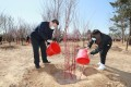 President Xi Jinping, left, waters saplings during a tree-planting activity in Daxing district in Beijing on April 3. Xi's recent pledge to get China to net zero carbon dioxide emissions by 2060 was the latest in a series of increasingly bold programmes intended to mitigate climate change. Photo: Xinhua