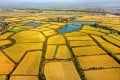 The farmland upgrade is intended to prioritise grain-producing areas. Photo: VCG via Getty Images
