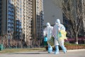 Workers carry a container of coronavirus test samples outside of a residential neighbourhood in Shijiazhuang in Hebei province on Friday. Photo: Xinhua via AP