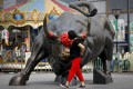 A bull sculpture located outside a retail and wholesale clothing mall in Beijing. Stocks in mainland China and Hong Kong retreated after a powerful start to the new year. Photo: AP