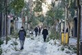Trees damaged by heavy snowfall are seen on a shopping street in central Madrid, after a sub-zero blast hit the country. Photo: Bloomberg