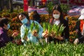 Shoppers take to the flower market in Victoria Park on Sunday. Photo: Sam Tsang