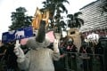 An anti-government protester wearing an elephant costume flashes the pro-democracy movement's three-finger salute next to a line of anti-riot police officers at the Royal Thai Police Headquarters in Bangkok on Tuesday Photo: EPA-EFE