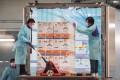 Covid-19 vaccine shots from BioNTech arrive in Hong Kong in February. Photo: Felix Wong