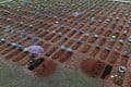 A worker digs a grave in the San Juan Bautista cemetery in Iquitos, Peru in March. Photo: AP