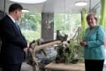 Angela Merkel, pictured with Xi Jinping at a panda enclosure in Berlin Zoo, has been a leading proponent of engagement with China. Photo: AFP