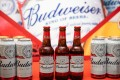 Budweiser APAC, which runs 52 breweries in China, South Korea, India and Vietnam, has set a target to cut its carbon footprint by a quarter by 2025 from 2017 levels. Photo: Bloomberg