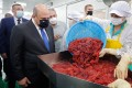 Russian Prime Minister Mikhail Mishustin visits a fish processing factory in Russia's Kuril Islands on July 26, 2021. Photo: EPA-EFE