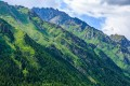 China announced it would set up a national park system in 2013. Photo: Shutterstock
