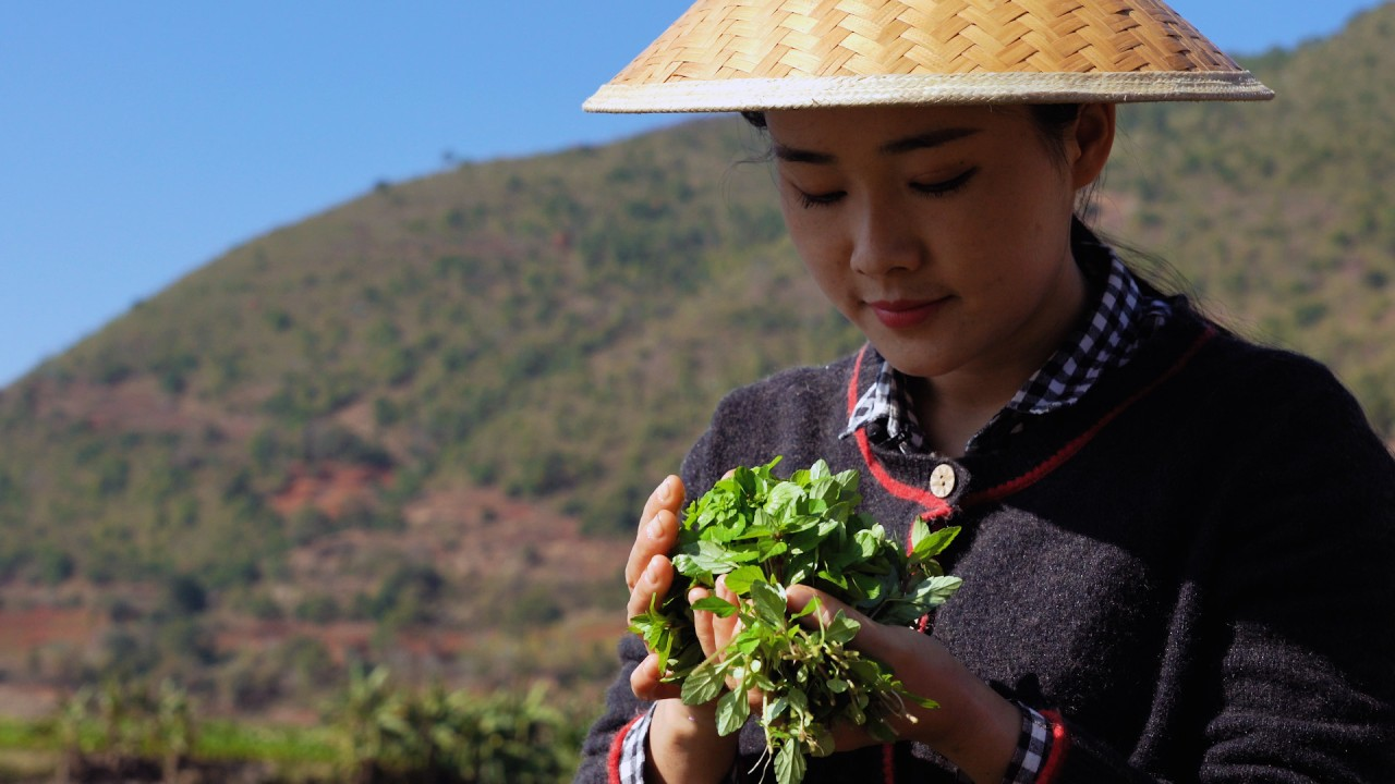 Dianxi Xiaoge's guide to foraging for edible plants in the wild