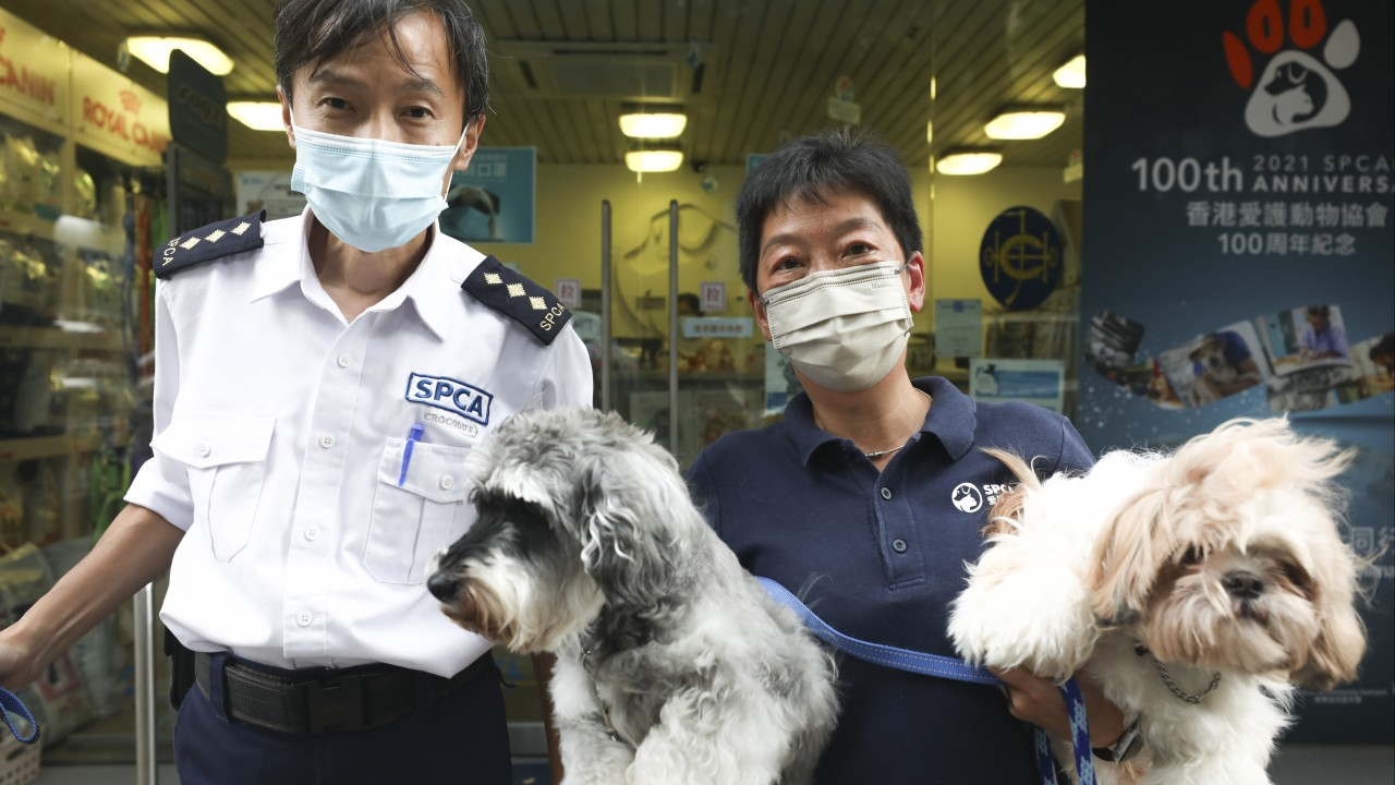 Hong Kong SPCA marks 100 years of rescuing animals and promoting their welfare in a city that doesn't do enough to protect them