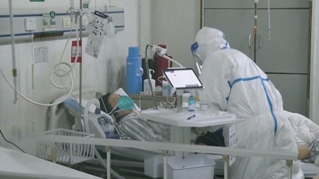 Coronavirus: Australian universities could take 'reputational hit' from China travel bans