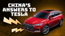 Here are the six biggest rivals to Tesla in China