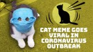 Viral meme of mask-wearing cat turns into a toy figure in coronavirus-hit China