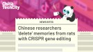 Chinese researchers 'delete' memories from rats with CRISPR gene editing