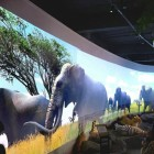 This Chinese zoo lets visitors see dinosaurs using virtual reality