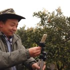 Why farmers are China's new live streaming stars