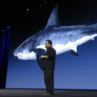 """Eccentric CEO who was blacklisted in China is back pitching """"shark skin"""""""