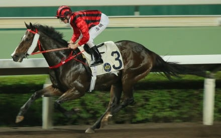 Zac Purton guides Kings Shield to victory at Sha Tin in November. Photos: Kenneth Chan