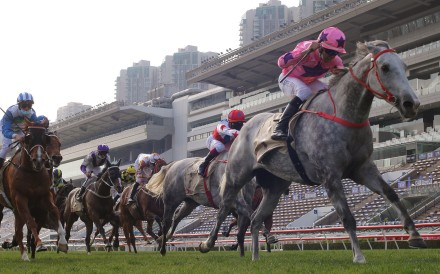 Joao Moreira guides Hot King Prawn to victory in the Group One Centenary Sprint Cup. Photo: Kenneth Chan