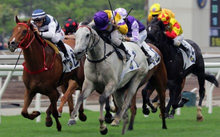 Matthew Poon urges Glorious Dragon to victory at Sha Tin on Monday. Photos: Kenneth Chan