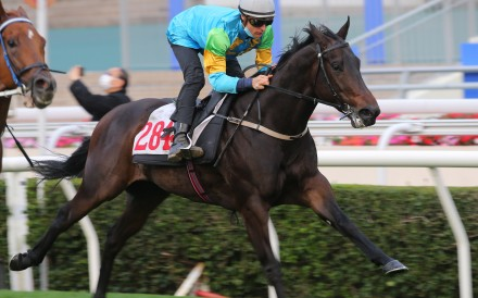 Blake Shinn partners Shenron in a recent trial. Photos: Kenneth Chan