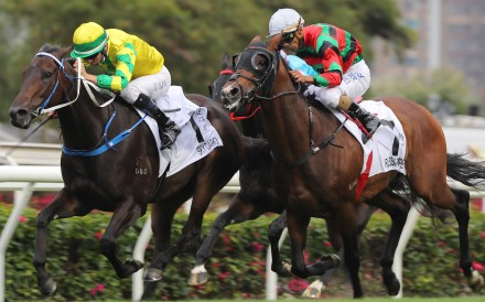 Russian Emperor (outside) is just beaten by Sky Darci in the Hong Kong Derby in March. Photos: Kenneth Chan