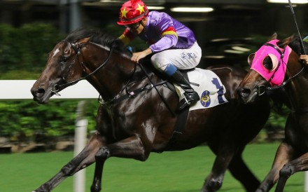 Derek Leung punches out Salto Olimpico at Happy Valley for his only Hong Kong win last year. Photos: Kenneth Chan
