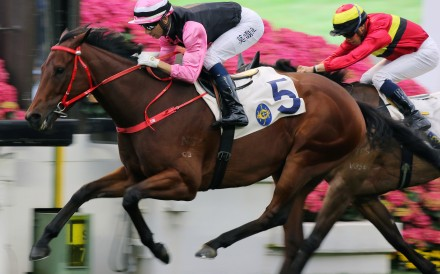 Full Of Beauty races away to win in Class Two grade earlier this season. Photos: Kenneth Chan
