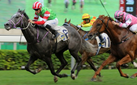 Chad Schofield guides Guy Dragon to victory at Sha Tin. Photos: Kenneth Chan