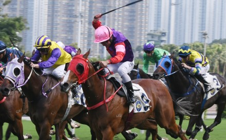Matthew Poon lifts Real Bizzy to victory at Sha Tin on Sunday. Photos: Kenneth Chan