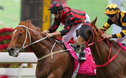 Time Warp beats Glorious Forever to win at Group Three level earlier this season. Photos: Kenneth Chan
