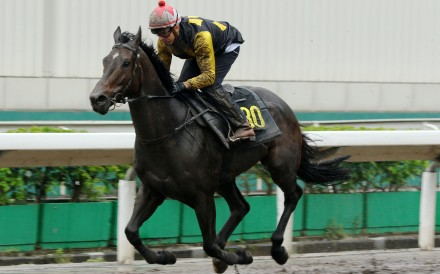 King's Trooper doing his best work during a barrier trial at Sha Tin this season. Photos: Kenneth Chan